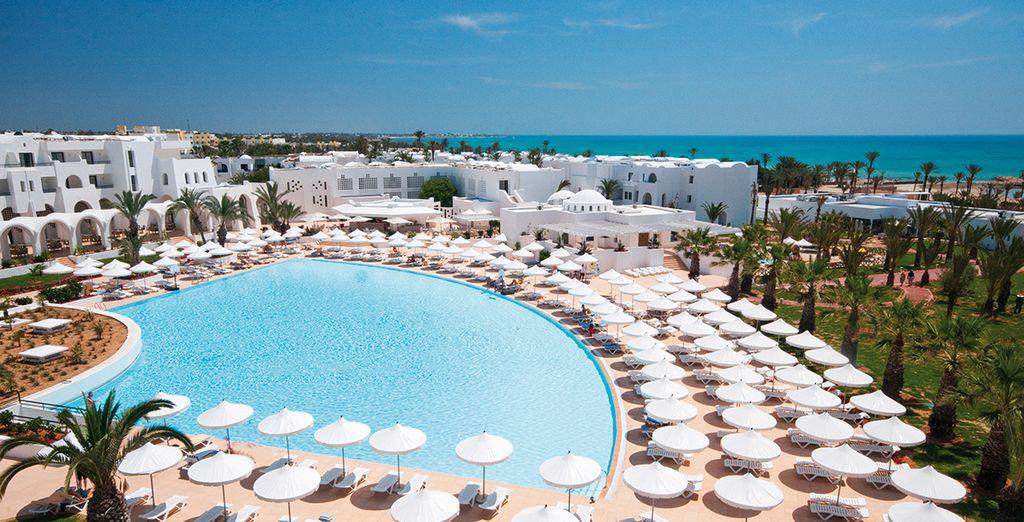 C'est parti pour l'évasion en Tunisie... - Hôtel Riu Palm Azur 4* Djerba