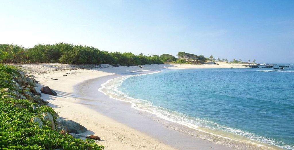 Tout comme la beauté de son littoral préservé