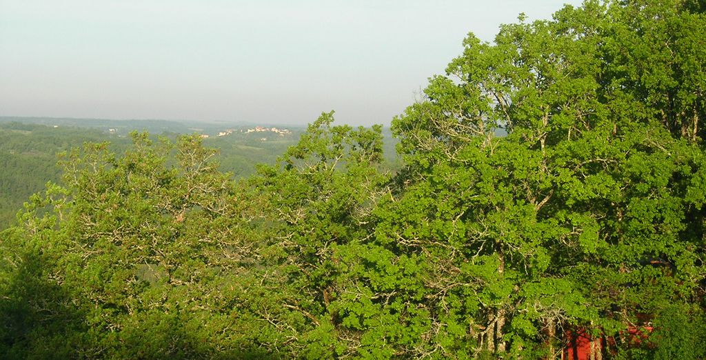 Et vibrez au rythme d'une nature verdoyante et débordante de vie