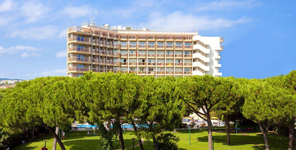 Profitez de la tranquillité des jardins entourant l'hôtel