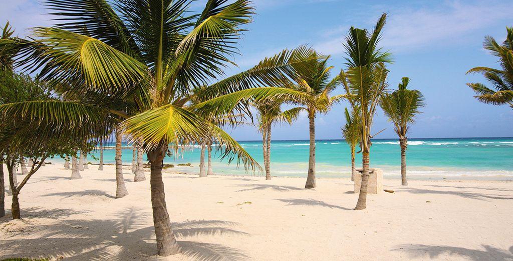 Mais peut-être préférez-vous rejoindre la divine plage de sable blond