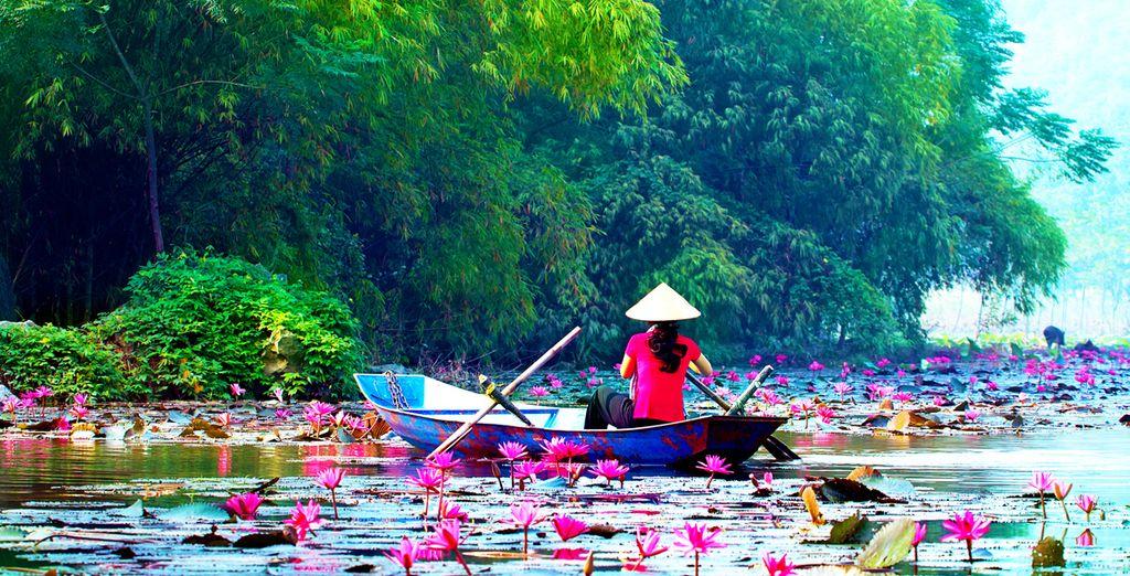 Envie de découvrir le Vietnam ?