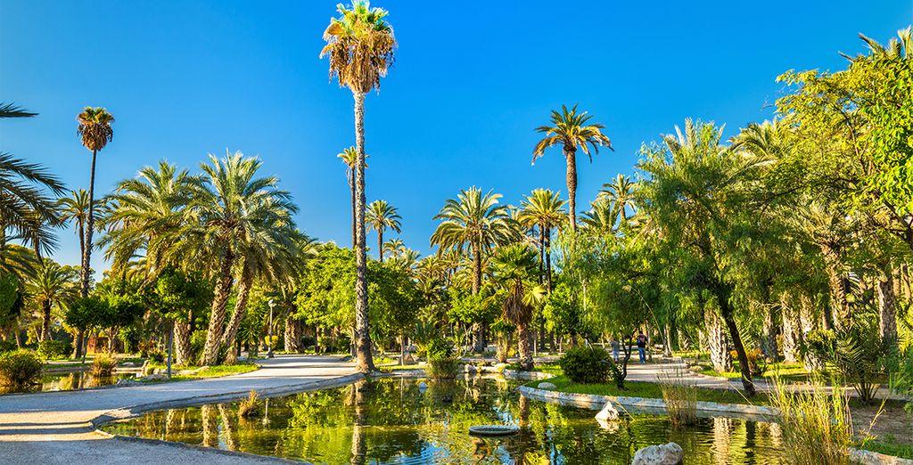 Bon séjour sous les palmiers de la Costa Blanca !