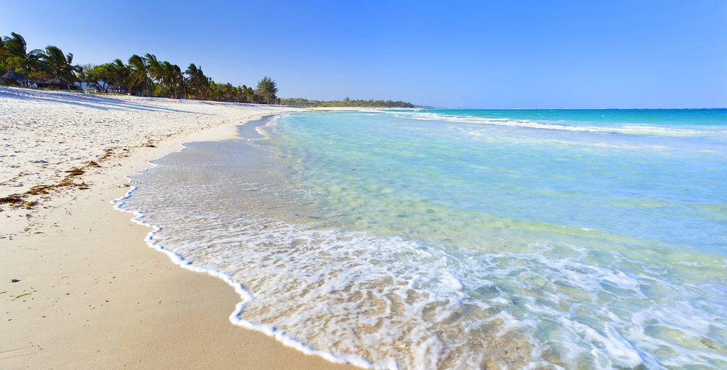 Au bord de la plage de Diani, l'une des plus belles du Kenya...