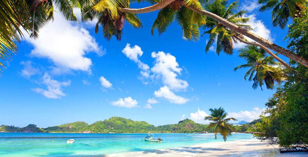 C'est un séjour enchanteur que vous vous apprêtez à vivre...