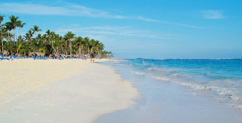 Après une belle balade sur la plage...