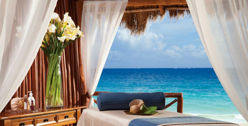 Mettez le temps sur pause le temps d'un séjour au paradis