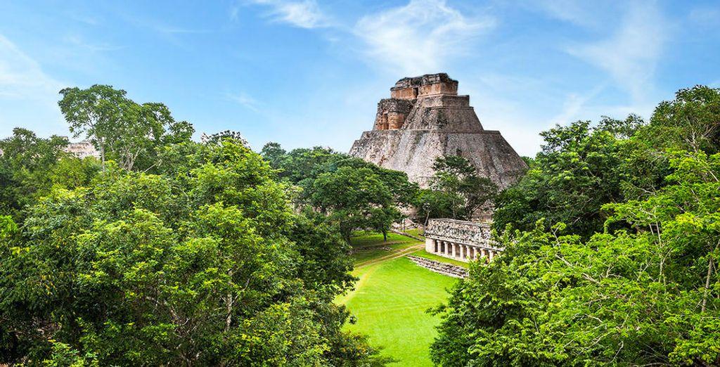 Si vous le souhaitez, vous pourrez choisir de débuter votre séjour par une découverte du Yucatan, terre de mystères...
