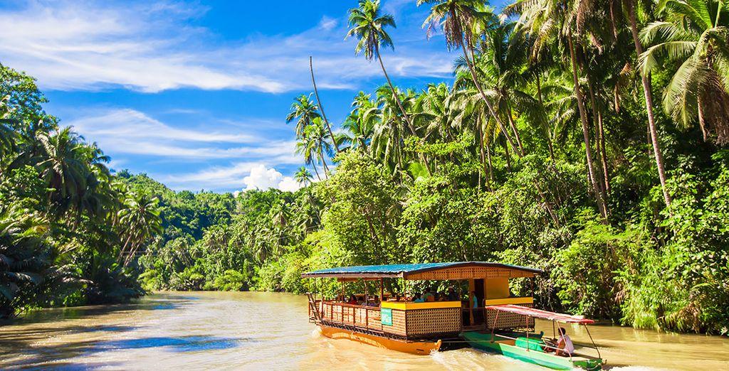 Partez à la découverte de l'intérieur des terres de Bohol