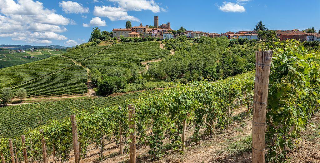 Partez découvrir montagnes et domaines viticoles