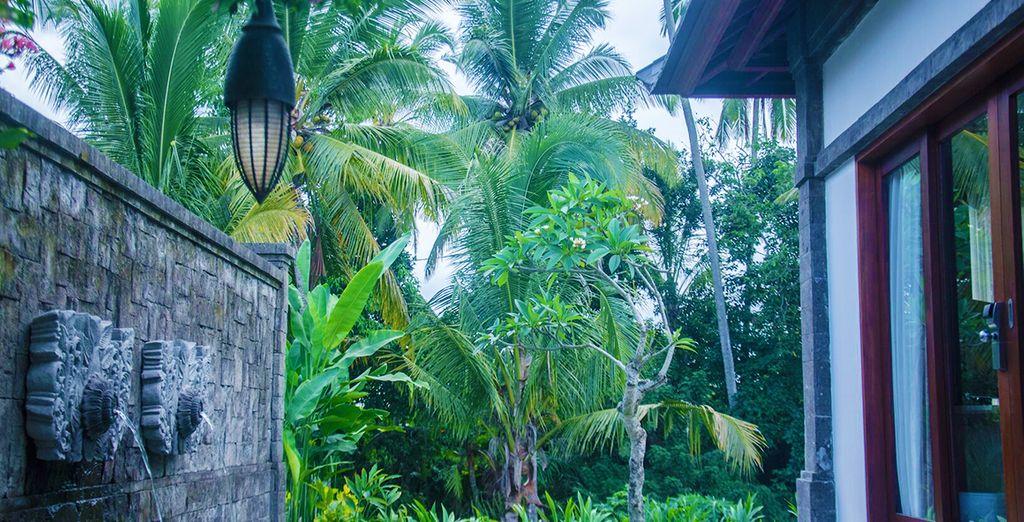 Installez-vous dans un véritable écrin tropical