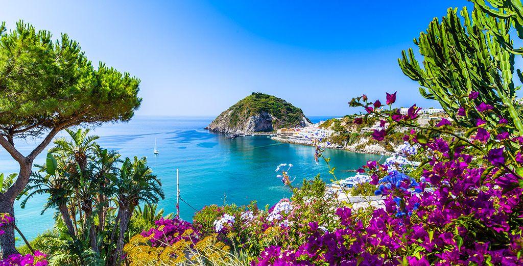Bienvenue sur l'île d'Ischia !