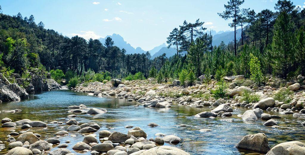 Parc naturel verdoyant, rivière et montagnes