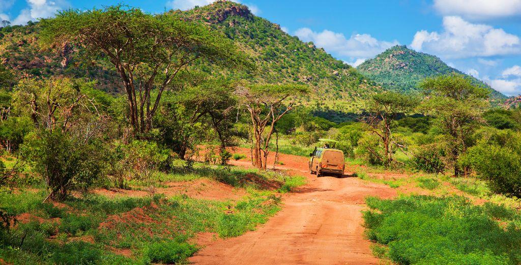 Réalisation d'un safari au coeur des parcs naturels du Kenya, terre rouge du parc de Tsavo et montagnes verdoyantes