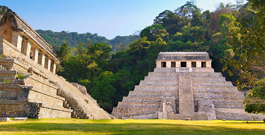 Découverte du Yucatan et extension banéaire 5* possible