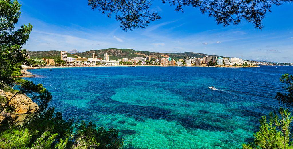 Découvrez le port de Soller à Majorque
