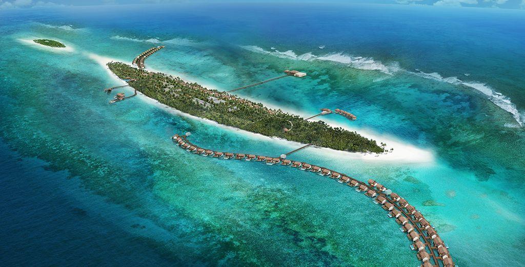 Evadez-vous dans l'atoll d'Ari au cœur de l'océan indien