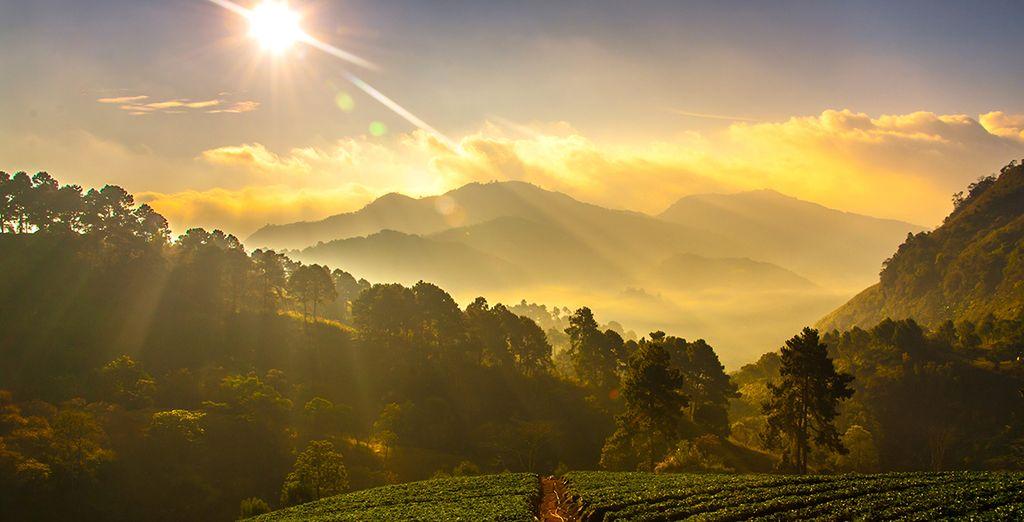Ou tout simplement vous détendre devant le spectaculaire paysage qu'offrent les montagnes