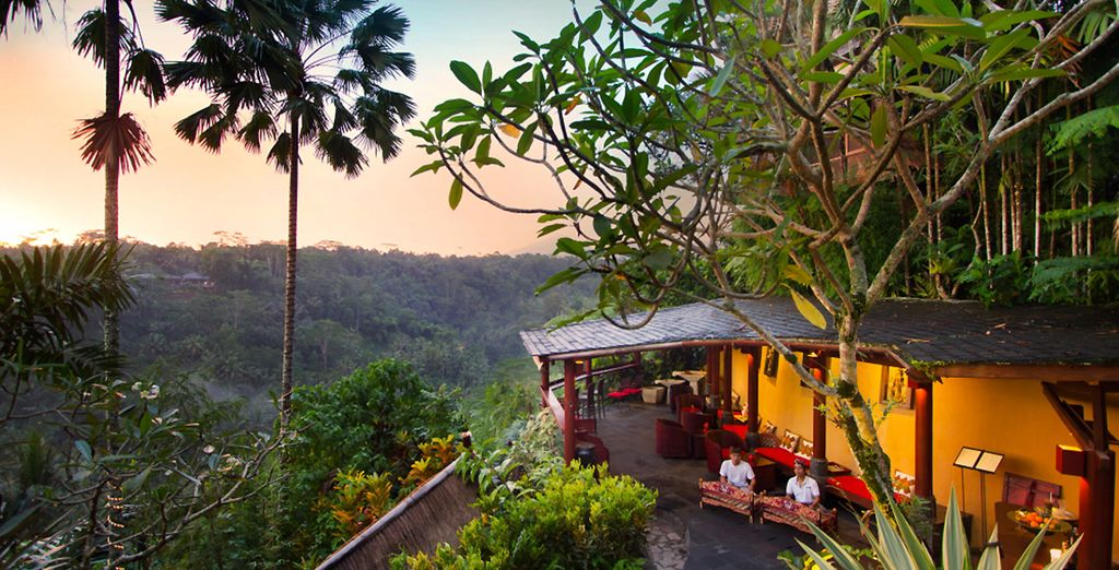 Combiné 5* : Jungle Retreat Ubud et The Sintesa Jimbaran