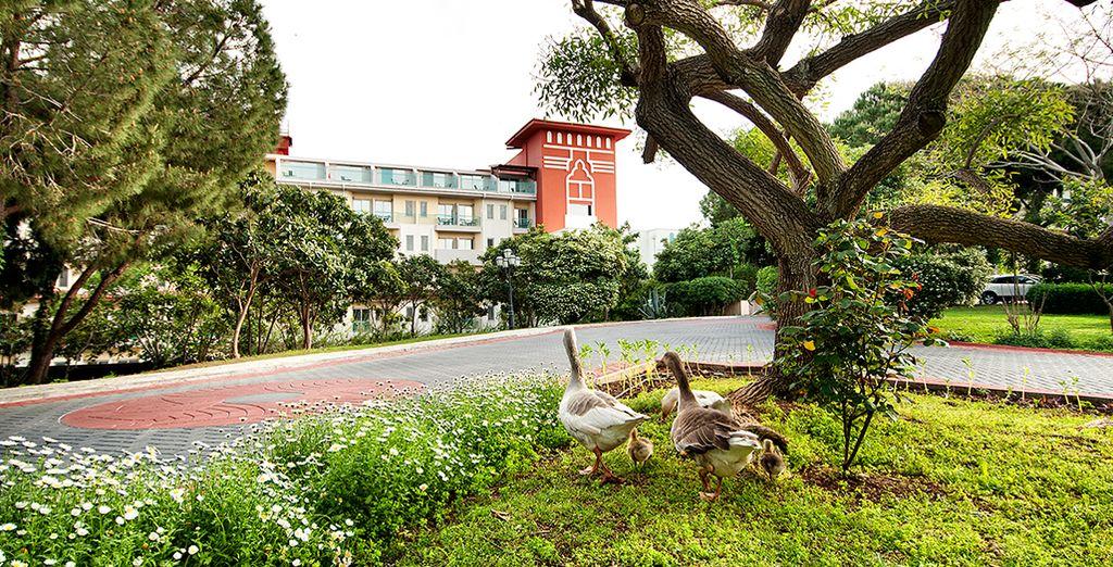 Un établissement incontournable pour des vacances réussies ! - Hôtel Bel Conti Resort 5* Belek