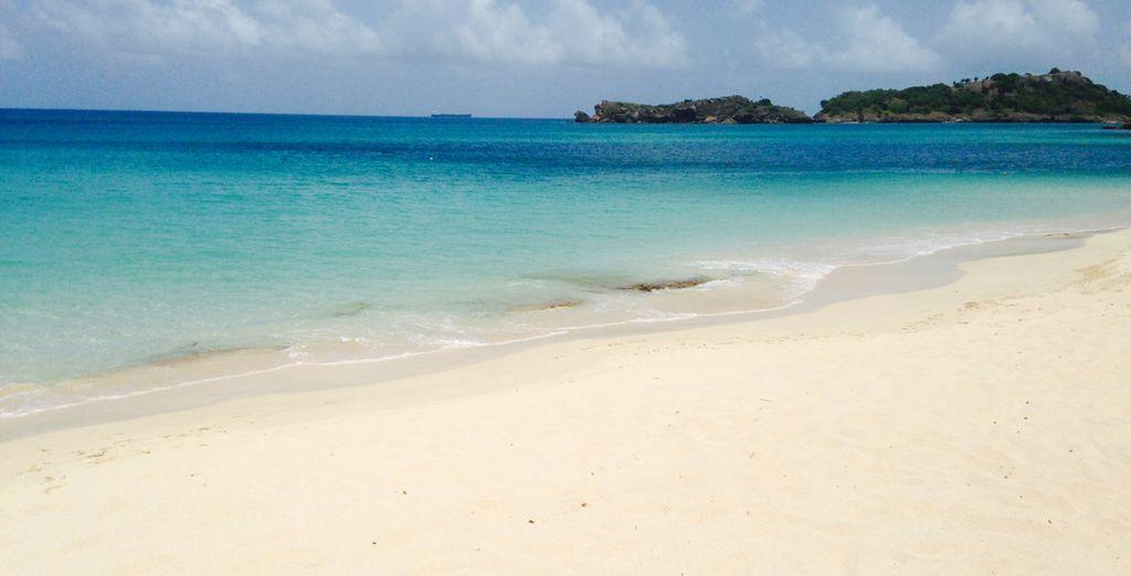 En passant par Antigua !