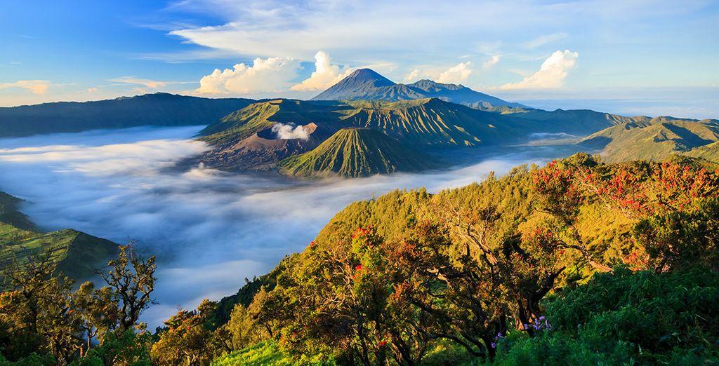 Au coeur même de la belle Indonésie