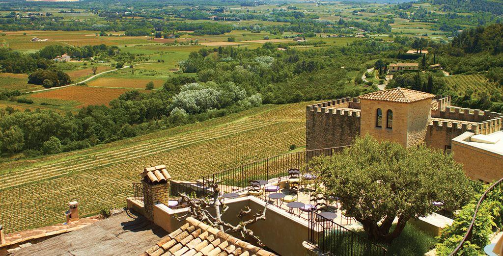 ... dans un écrin de verdure, au coeur de la Provence