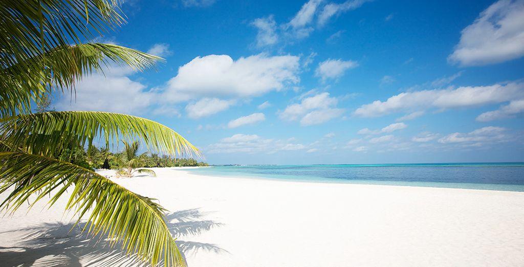 Offrez-vous des vacances inoubliables