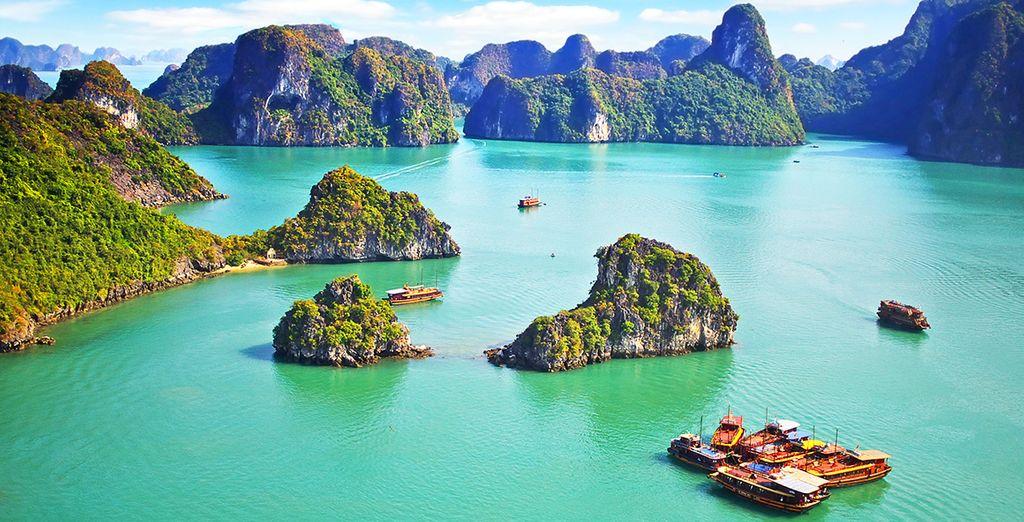 Naviguez dans la baie d'Halong