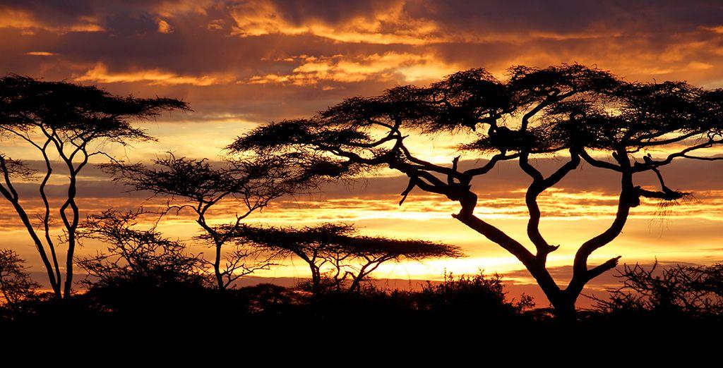Vous y admirerez un coucher de soleil aux couleurs indescriptibles