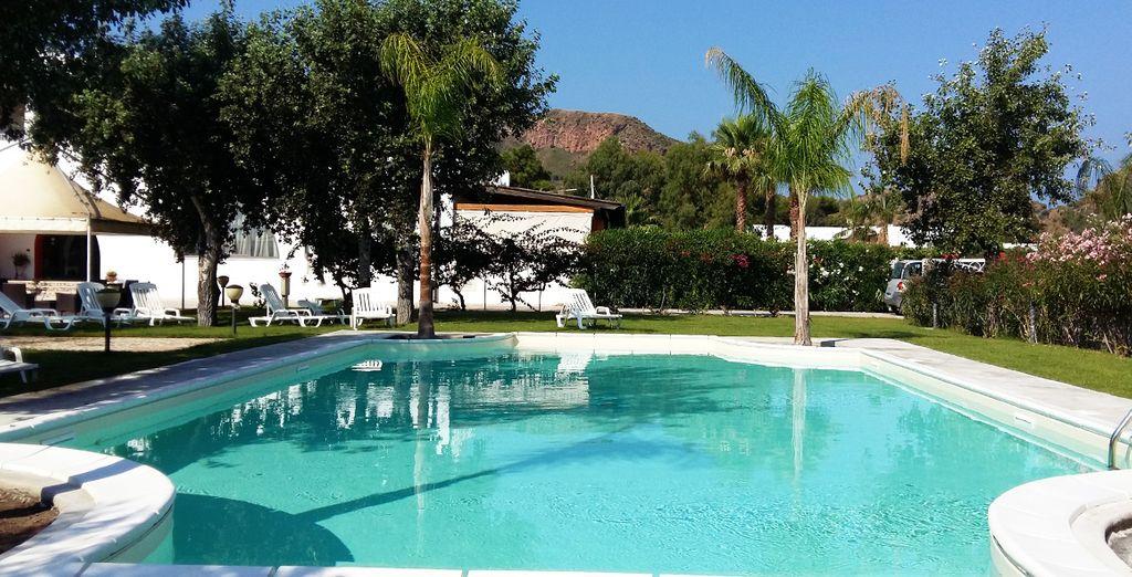 Lézardez au bord de la piscine