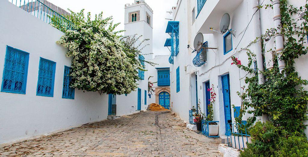 Ruelle de Hammamet en Tunisie verdoyant
