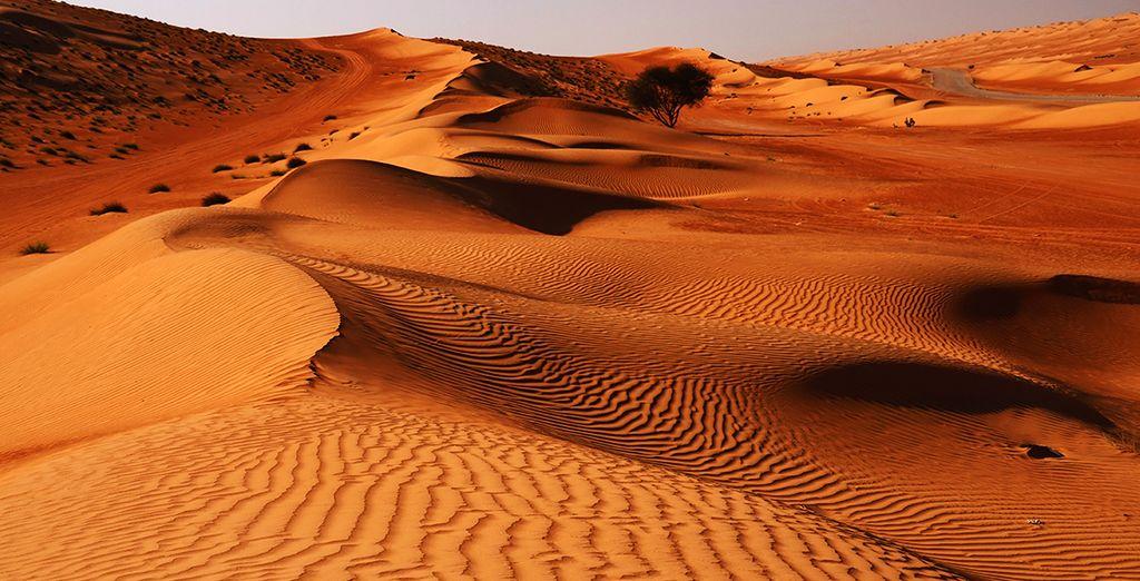 et vous émerveillerez du magnifique paysage offert par le désert de Wahiba Sand