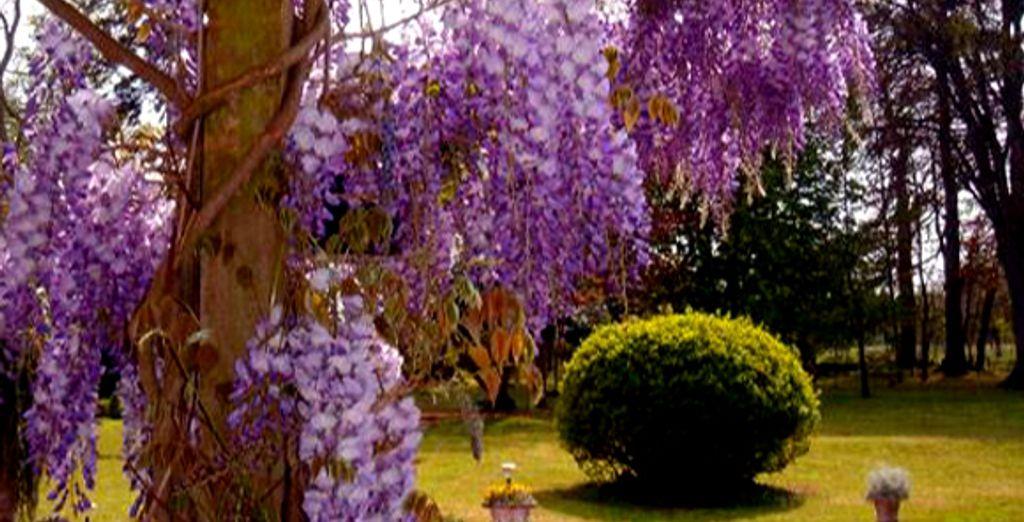 Les jardins fleuris du domaine