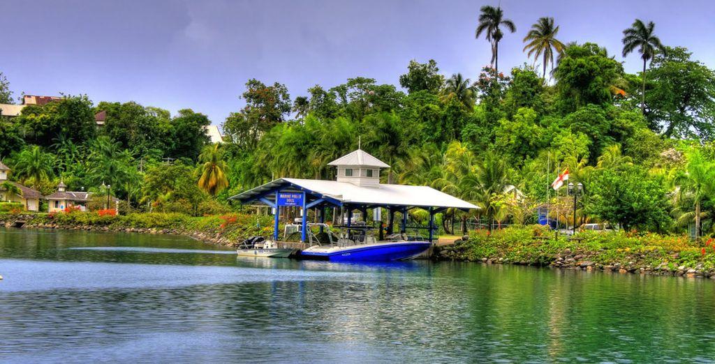 Découvrez une île colorée à la nature luxuriante