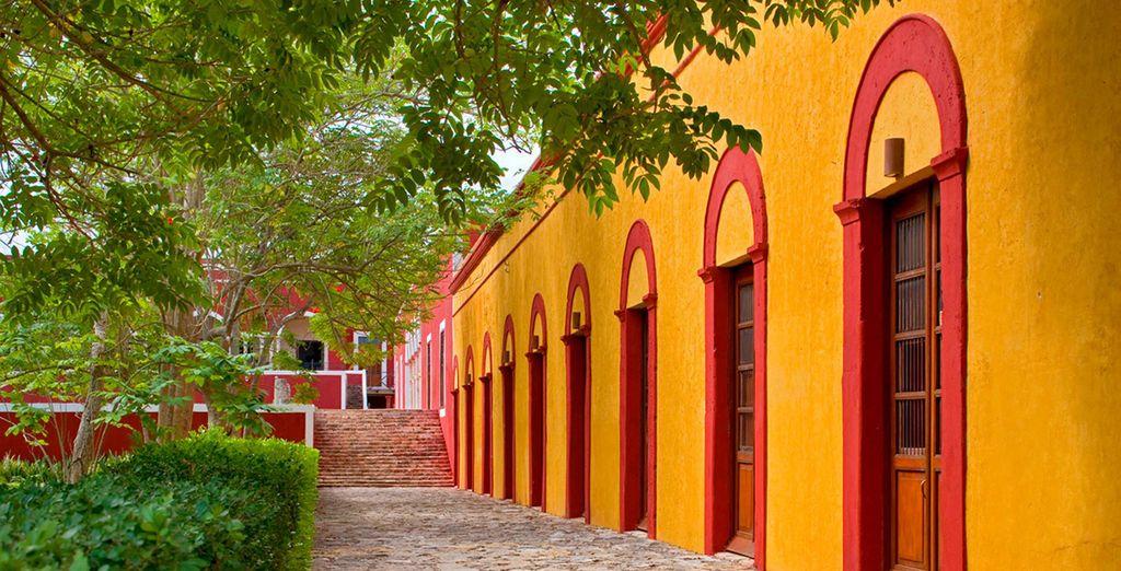 Chaque soir, poussez les portes d'une Hacienda...