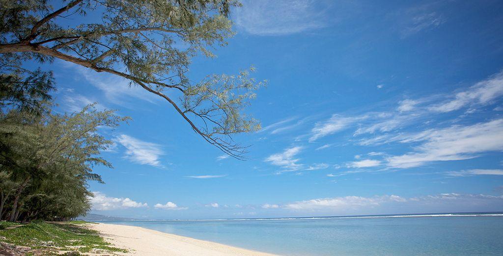 Photographie d'une plage de sable fin et vue sur l'océan Indien