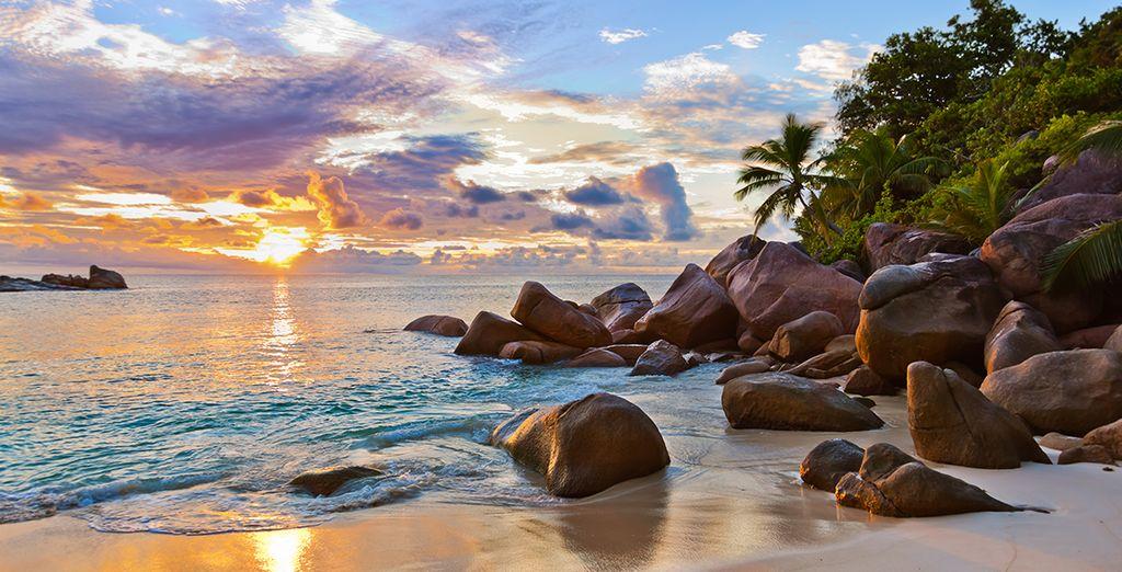 Plage de sable fin et vue sur le couché de soleil aux Seychelles