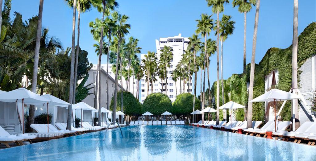 L'hôtel est dôté d'une grande piscine, parfaitement insérée au coeur de jardins luxuriant