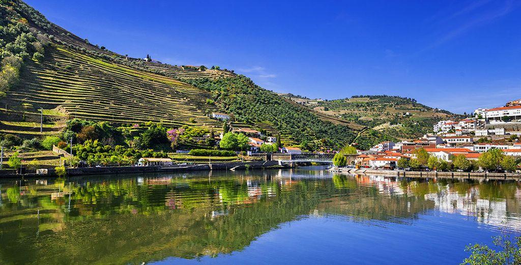 Paysages observés lors d'une croisière sur le Douro