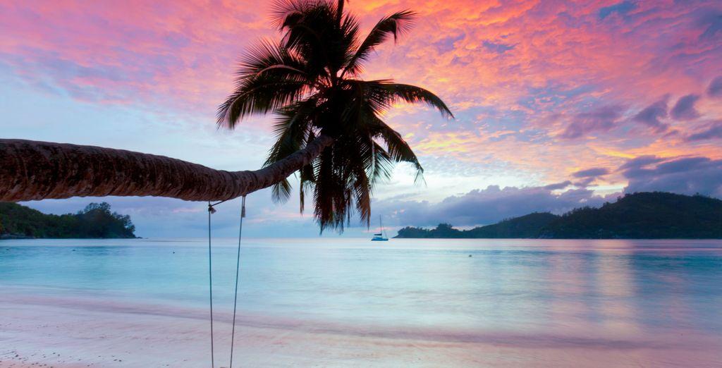 Vous reviendrez des Seychelles entièrement ressourcé... Excellent séjour !