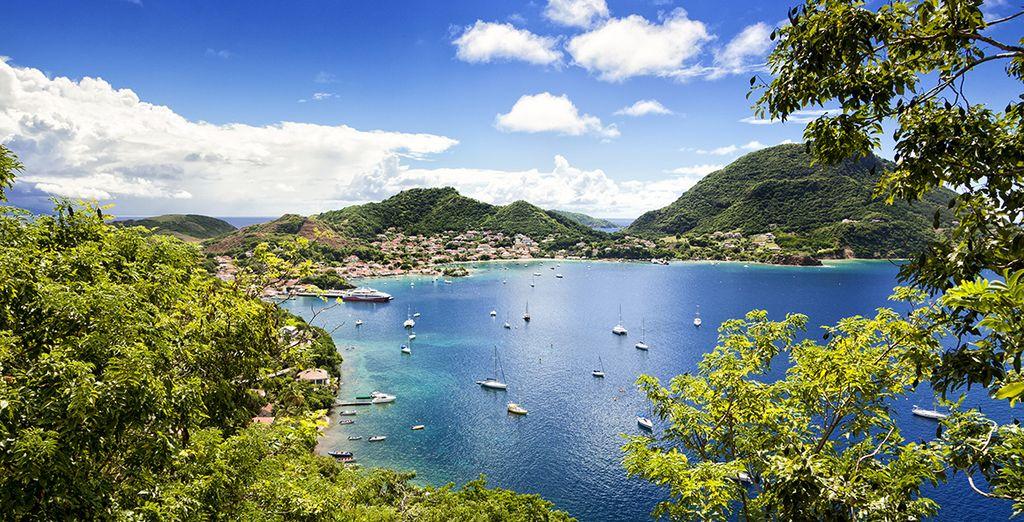 Bonnes vacances en Guadeloupe !