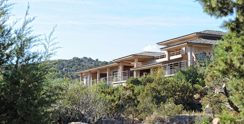 Comme fondu dans un paysage naturel préservé... découvrez Les Terrasses de Rondinara