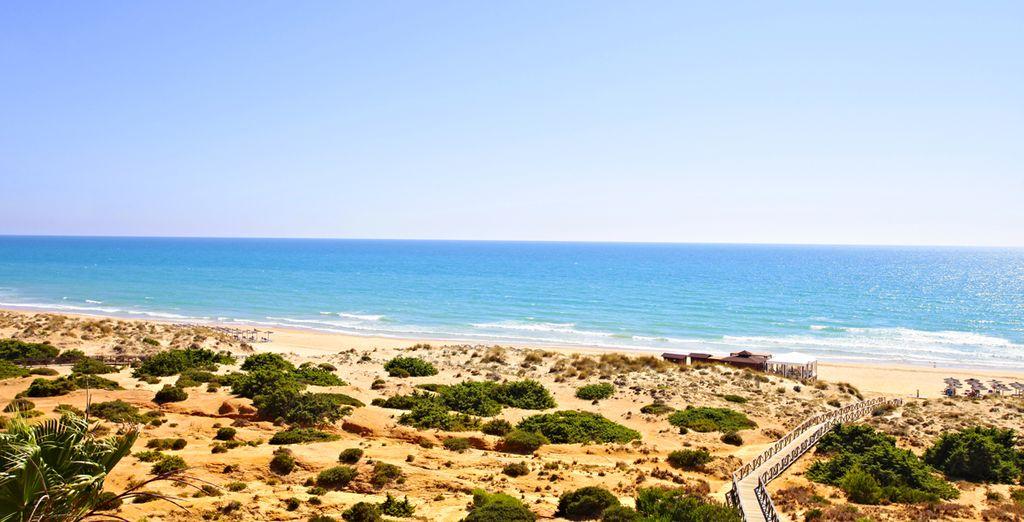 Pour un séjour au bord de la plage ? - Hôtel IBEROSTAR Royal Andalus 4* Cadix