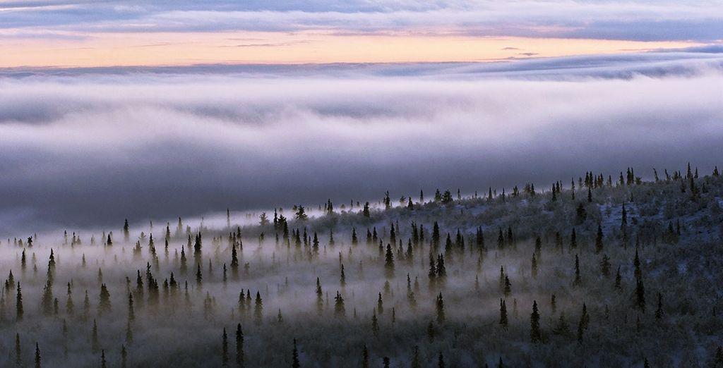 Rendez-vous en Laponie !