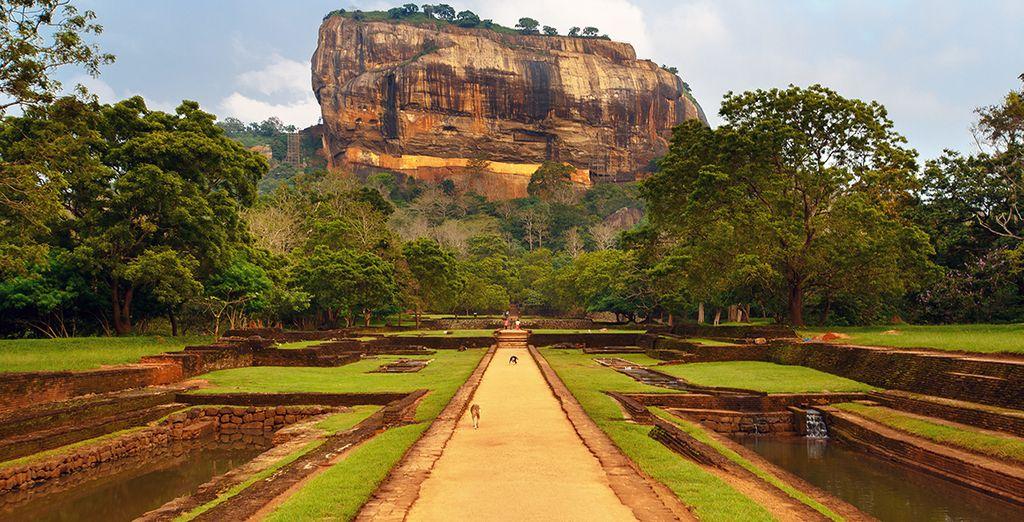 Une randonnée jusqu'au sommet de rocher du Lion au Sri Lanka