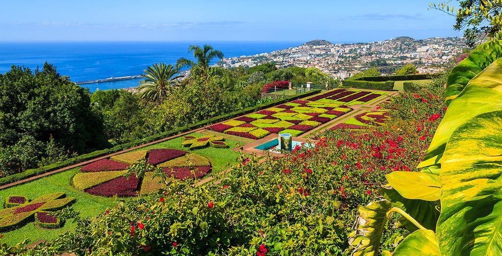 La célèbre île aux fleurs