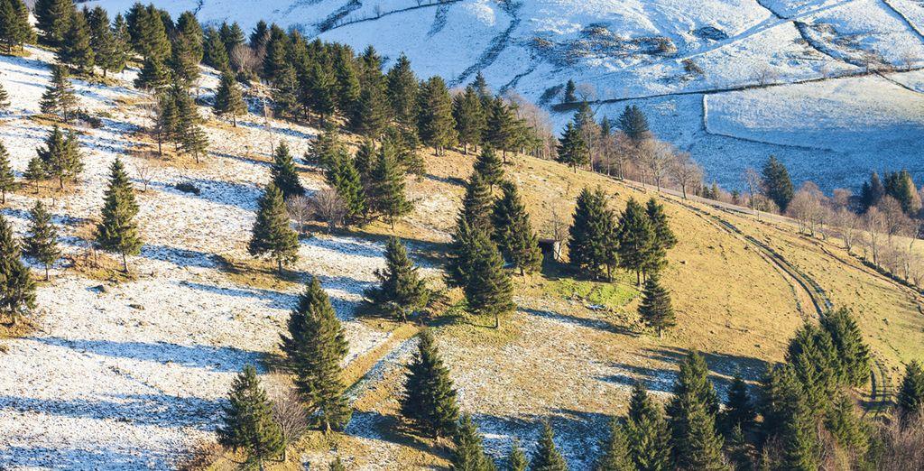 Passez un séjour au ski à Strasbourg