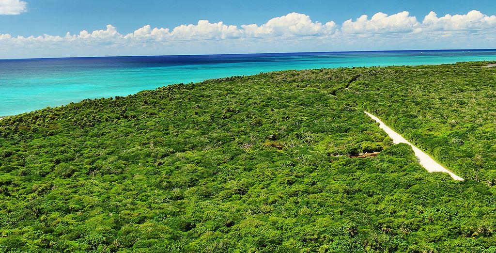 De l'île de Cozumel