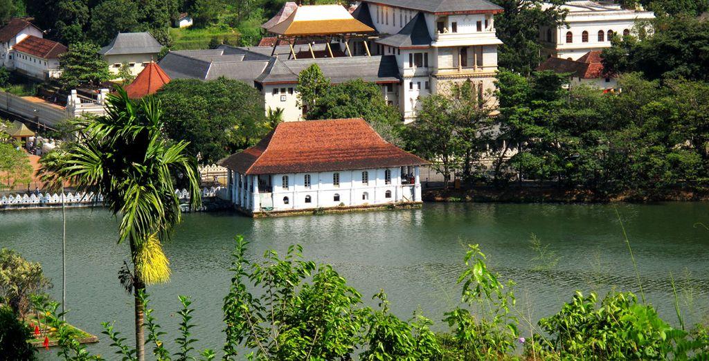 Partez pour la ville de Kandy et ses contrastes...